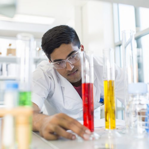 Curtin Malaysia offering PhD scholarships to qualified postgraduate research candidates
